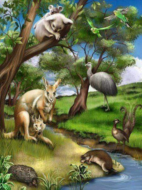 5D Diamond Painting Kangaroo and Koala Stream Kit