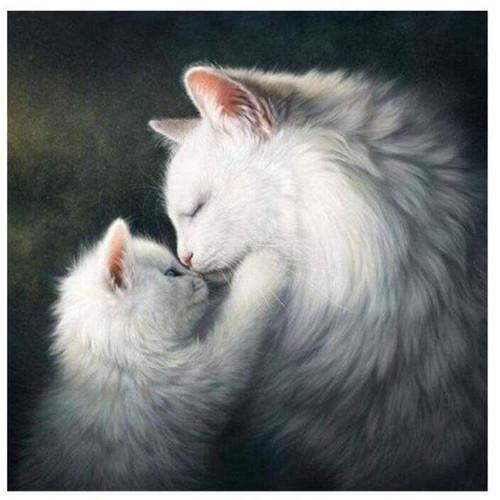 5D Diamond Painting White Cat & Kitten Kit