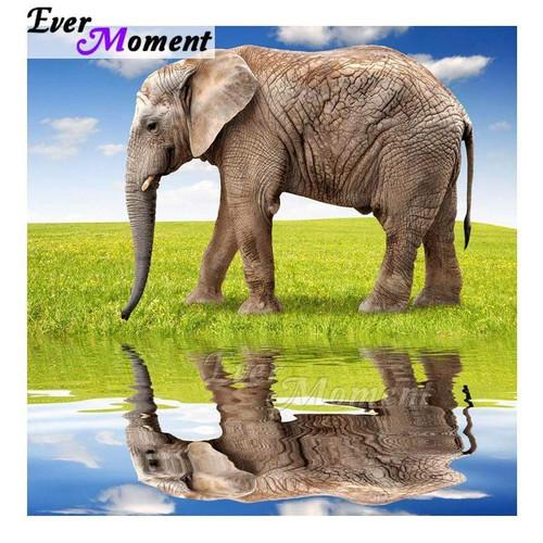 5D Diamond Painting Elephant on the Grass Reflection Kit