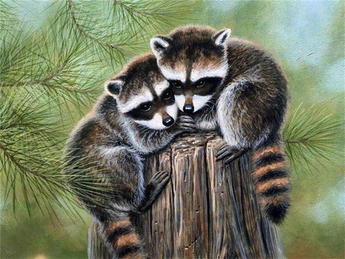 5D Diamond Painting Two Raccoons on a Stump Kit