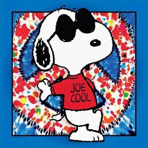 5D Diamond Painting Snoopy Joe Cool Kit