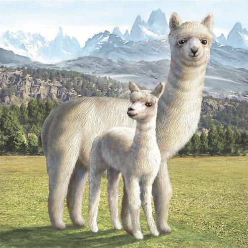 5D Diamond Painting Two White Alpacas Kit