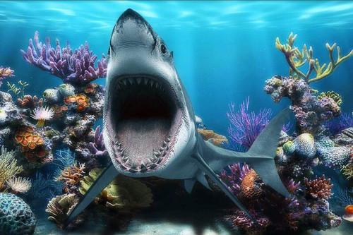 5D Diamond Painting Open Mouth Shark Kit