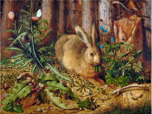5D Diamond Painting Rabbit in the Woods Kit