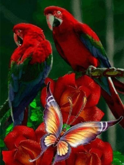 5D Diamond Painting Two Parrots & Butterfly Kit