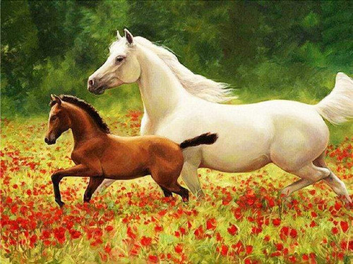 5D Diamond Painting White Horse and Foal Kit