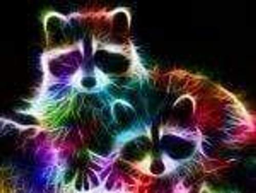 5D Diamond Painting Electric Raccoons Kit