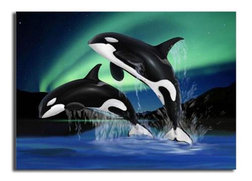 5D Diamond Painting Two Orcas Kit