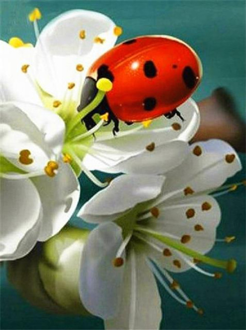 5D Diamond Painting Ladybug in the Blossoms Kit