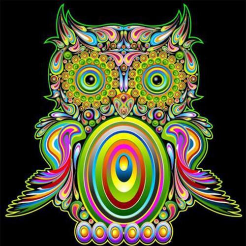 5D Diamond Painting Crazy Colorful Owl Kit