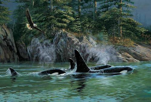 5D Diamond Painting Whale Pod Eagle Kit