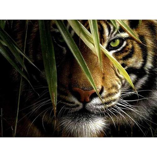 5D Diamond Painting Jungle Tiger Kit