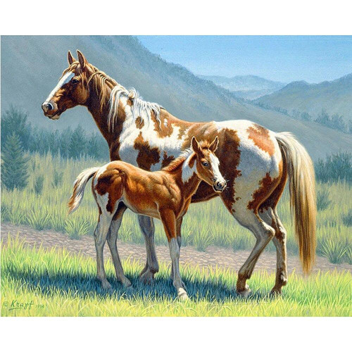5D Diamond Painting Brown and White Horses Kit