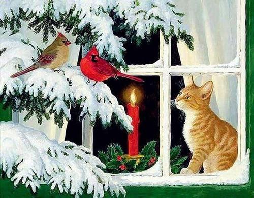 5D Diamond Painting Cat Watching Birds in the Snow Kit