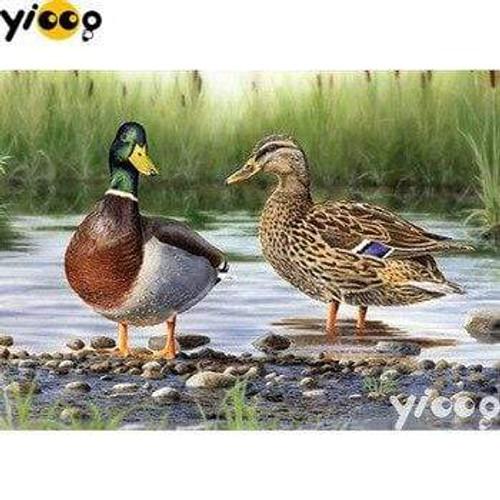 5D Diamond Painting Two Ducks Kit