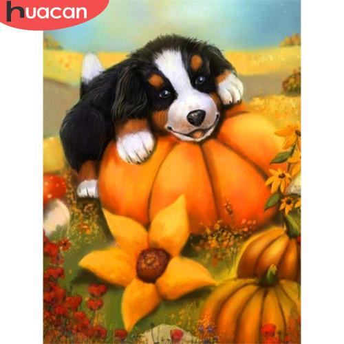 5D Diamond Painting Pumpkin Puppy Kit