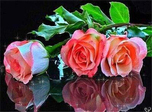 5D Diamond Painting Three Pink Roses with Leaves Kit
