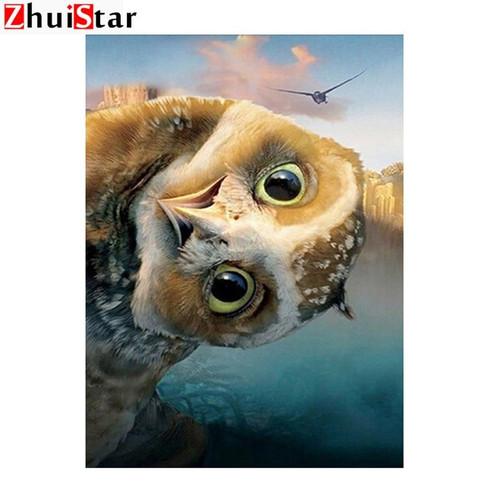 5D Diamond Painting Side Glance Owl Kit