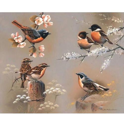 5D Diamond Painting Bird Collage Kit
