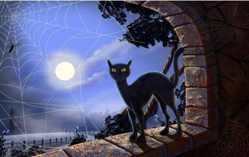 5D Diamond Painting Black Cat Spiderweb Kit