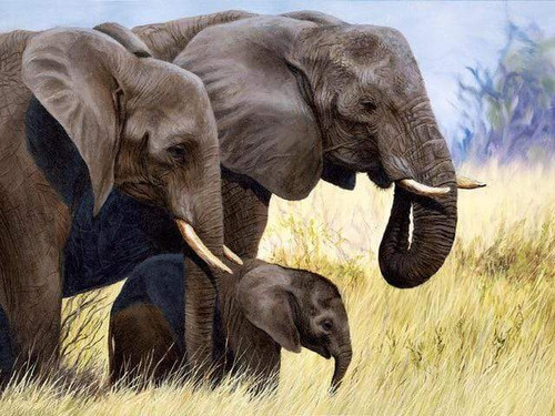 5D Diamond Painting Elephants in the Tall Grass Kit