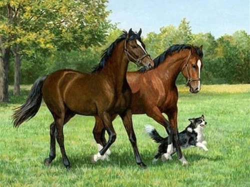5D Diamond Painting Two Horses and a Dog in the Meadow Kit
