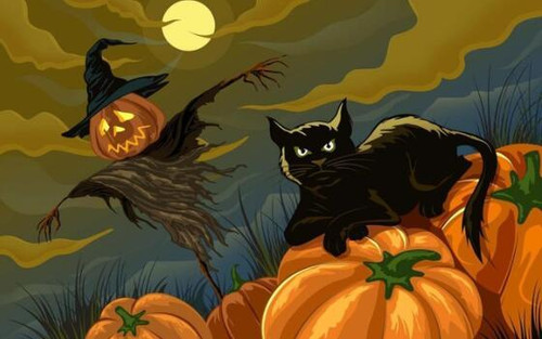 5D Diamond Painting Black Cat and a Scarecrow Kit