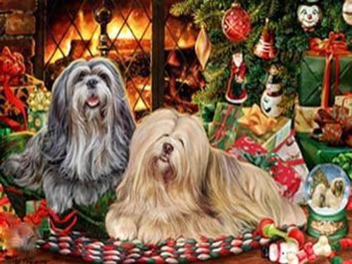 5D Diamond Painting Two Christmas Tibetan Terriers Kit