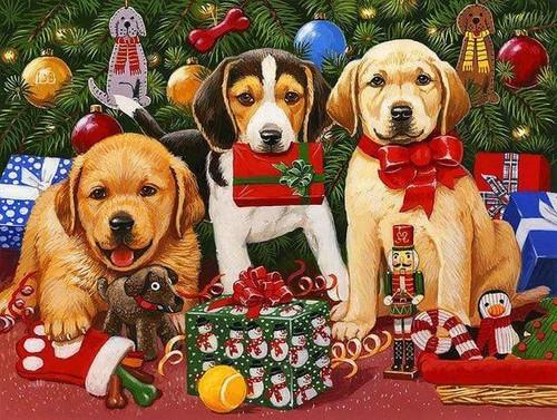 5D Diamond Painting Three Puppies with Presents Kit