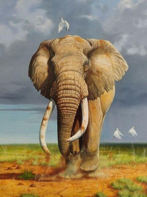 5D Diamond Painting Elephant and Cattle Egrets Kit
