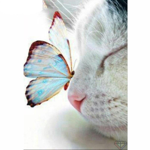 5D Diamond Painting White Cat and Butterfly Kit