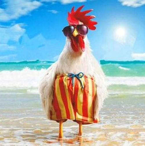 5D Diamond Painting Beach Chicken Kit
