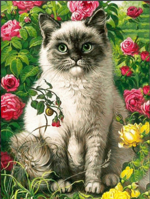 5D Diamond Painting Cat in the Pink and Yellow Roses Kit