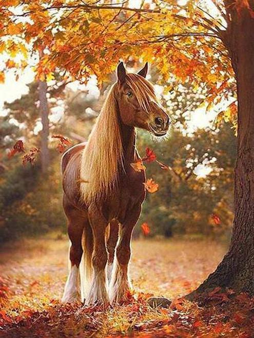 5D Diamond Painting Fall Leaves Pony Kit
