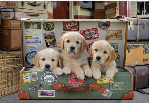 5D Diamond Painting Puppies in a Suitcase Kit