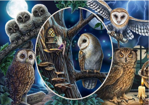 5D Diamond Painting Collage of Owls Kit