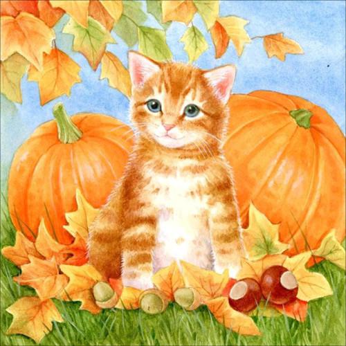 5D Diamond Painting Orange Kitten and Two Pumpkins Kit