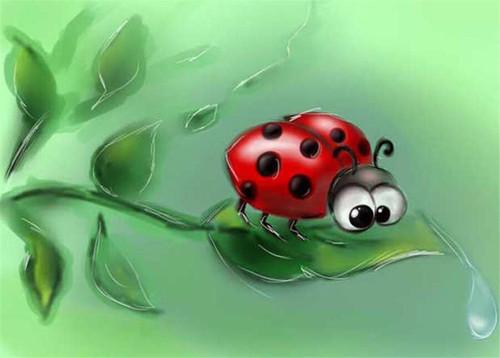 5D diamond Painting Googly Eye Ladybug Kit