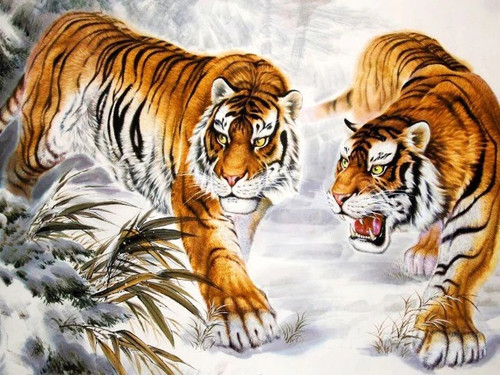 5D Diamond Painting Two Tigers Walking in the Snow Kit