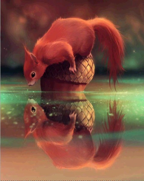 5D Diamond Painting Squirrel Reflection Kit
