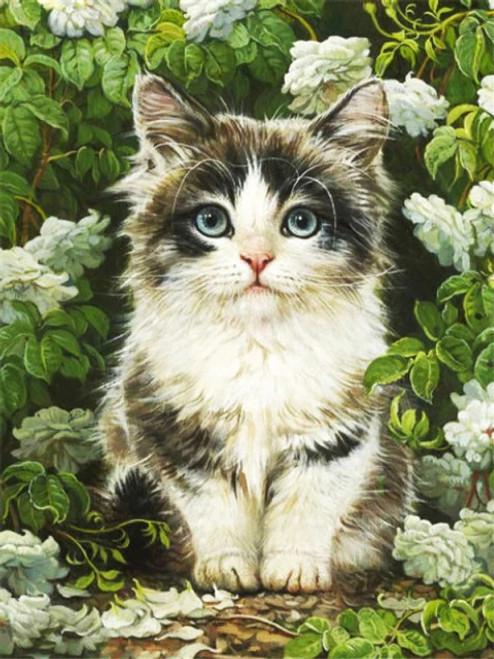 5D Diamond Painting Kitten Sitting in the White Flowers Kit