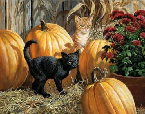 5D Diamond Painting Black and Orange Kittens by the Pumpkins Kit