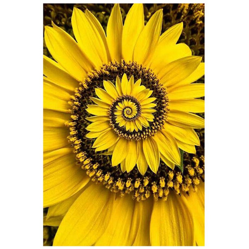 5D Diamond Painting Yellow Swirling Flower Petals Kit