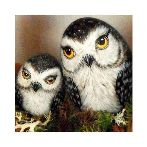 5D Diamond Painting Two Cute Eye Owls Kit