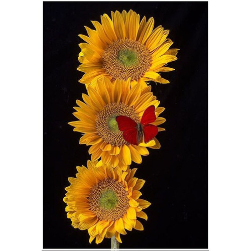 5D Diamond Painting Red Butterfly on Yellow Flowers Kit