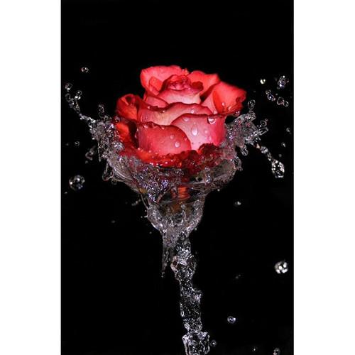 5D Diamond Painting Water Stem Rose Kit