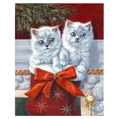 5D Diamond Painting Two White Kittens in a Stocking Kit