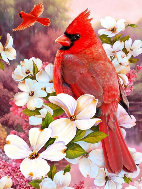 5D Diamond Painting White Blossom Cardinal Kit