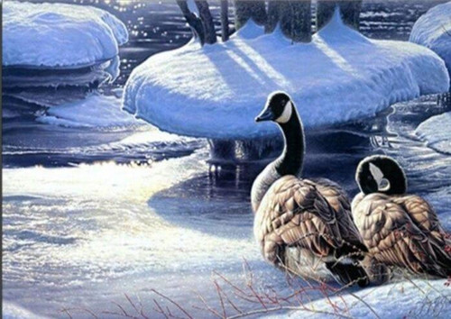 5D Diamond Painting Two Geese in the Snow Kit