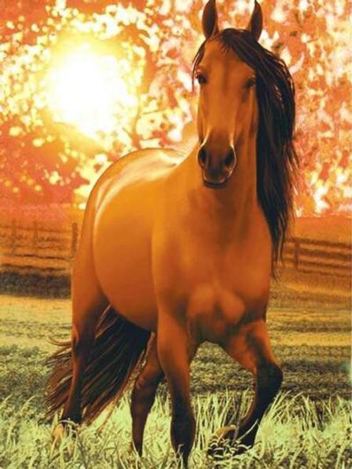 5D Diamond Painting Horse in the Sunlight Kit